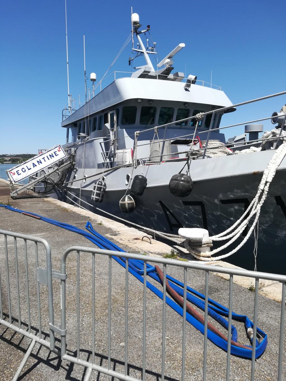 le port de Bayonne  Img_2022