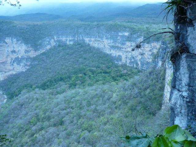 La Conchuda, Ocozocuautla, Chiapas. P1000416