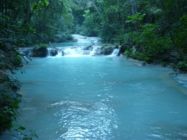 La Conchuda, Ocozocuautla, Chiapas. P1000421