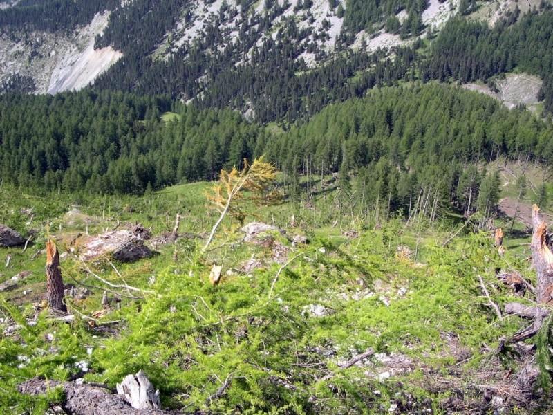 la montagne Dscn0045
