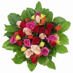 Feliz cumpleaños Rosa-f10