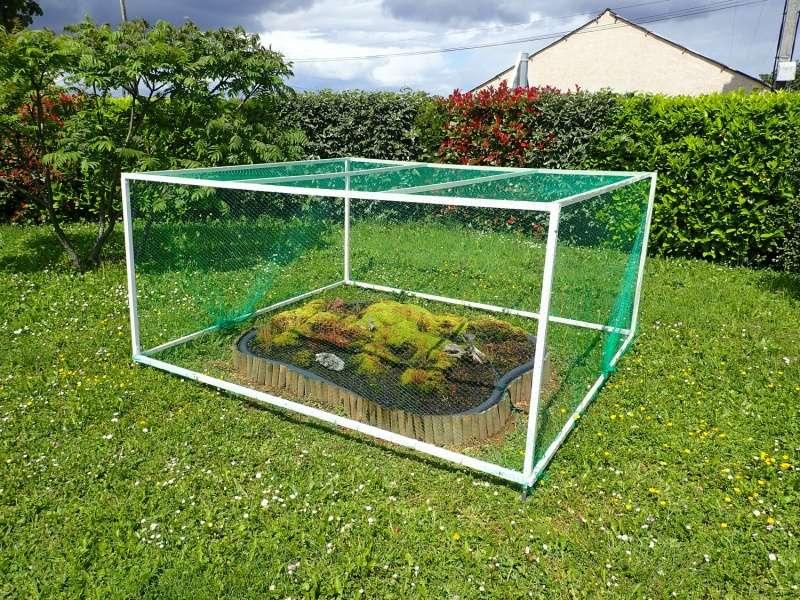 Enfin!! protection contre les oiseaux P5190010