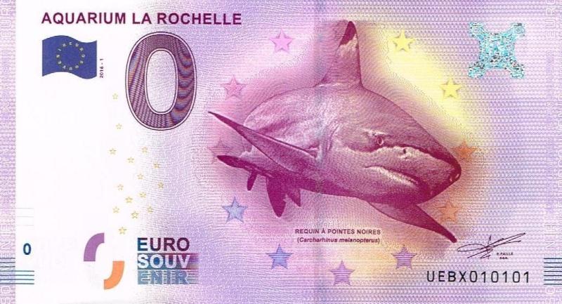 BES 2016 UE-- (109) Rochel10