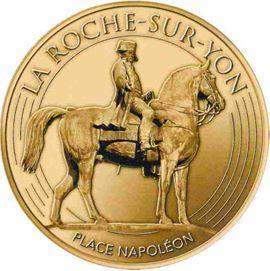 La Roche-sur-Yon (85000) Roches10