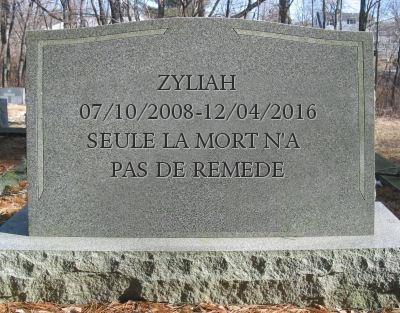 RIP Zyliah... My_tom10