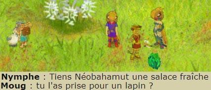 La Communication Tout un Art - Année 639 - 640 - 641 - 642 - 643 - 644 - 645 Lapin10