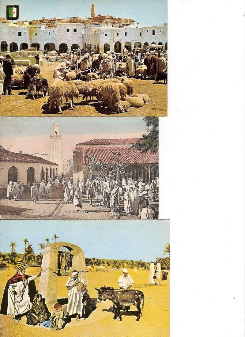 cartes postales d'algerie - Page 6 Scan0013