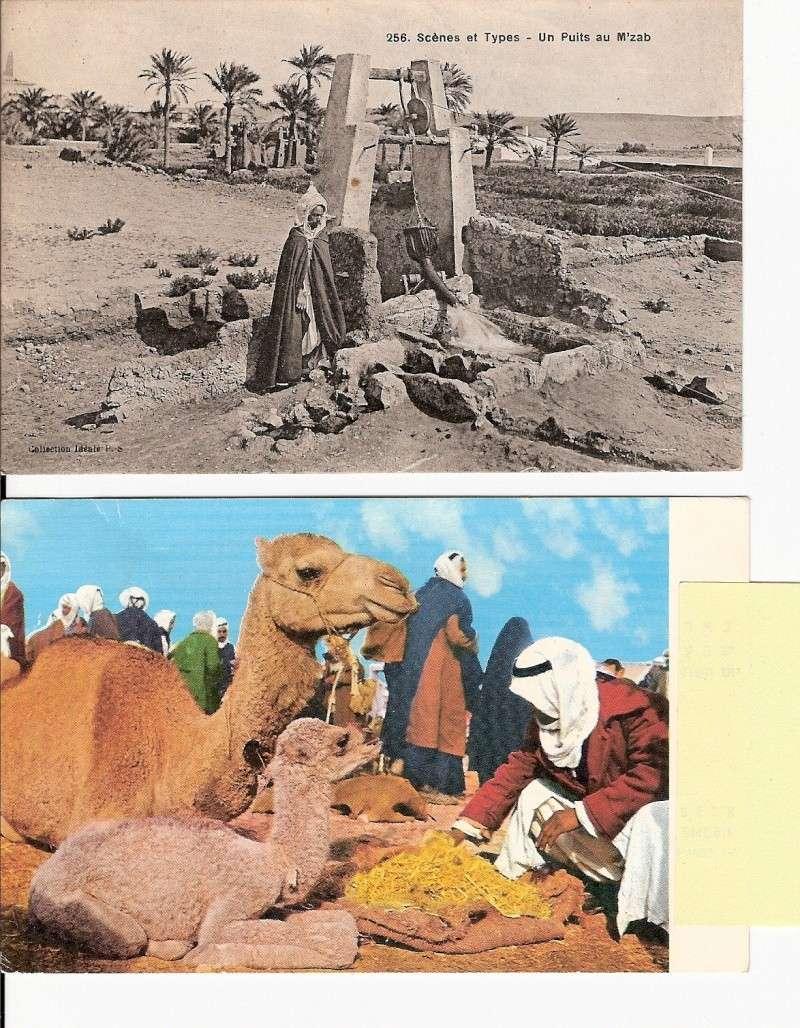cartes postales d'algerie - Page 6 Scann184