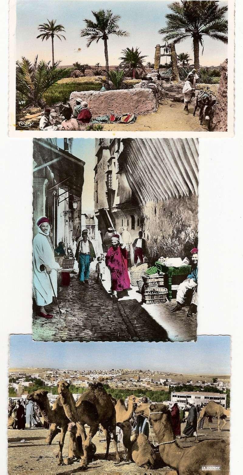 cartes postales d'algerie - Page 6 Scann253