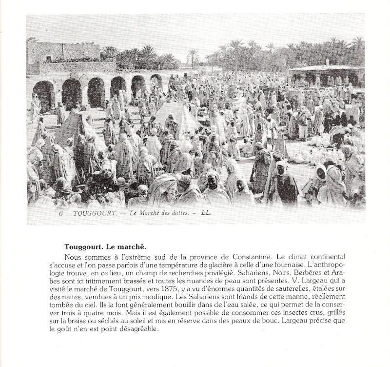 CPA ALGER - Page 2 Scanne19