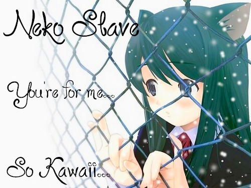 So Kawaii... Neko Slave ~♫♪