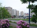 Brest Dsc04114