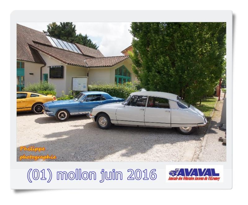 [01] 5 juin 2016 Mollon Dsc09425