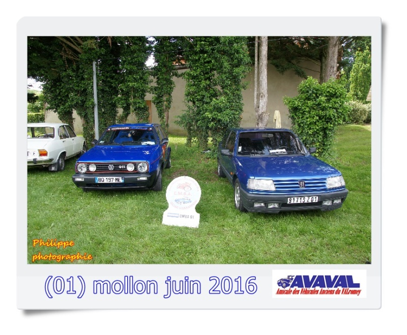 [01] 5 juin 2016 Mollon Dsc09511
