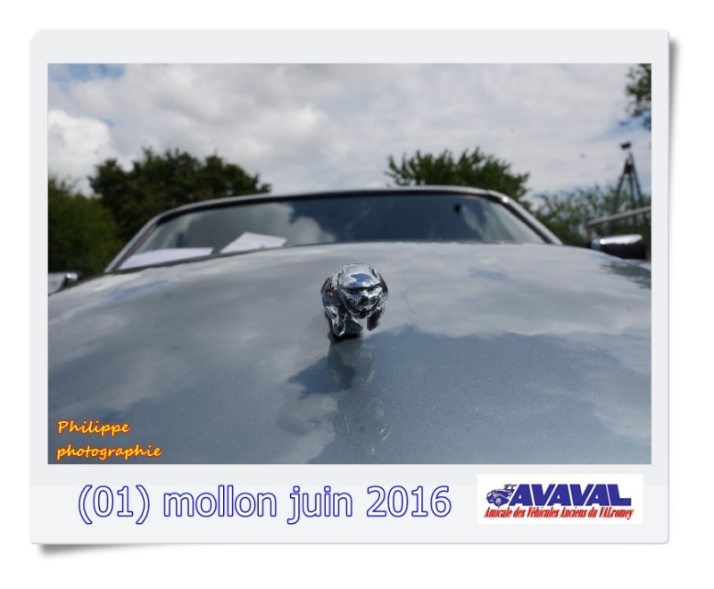 [01] 5 juin 2016 Mollon Dsc09513