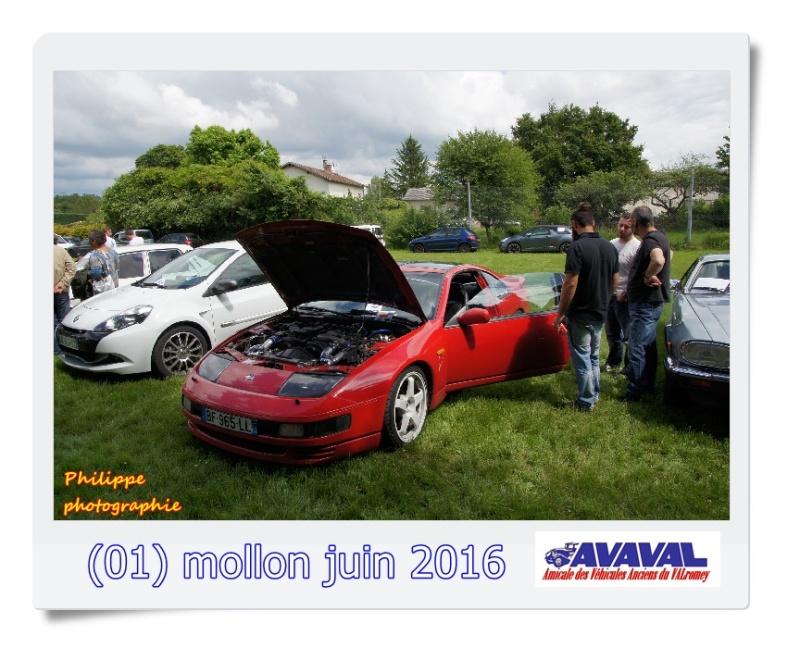 [01] 5 juin 2016 Mollon Dsc09514