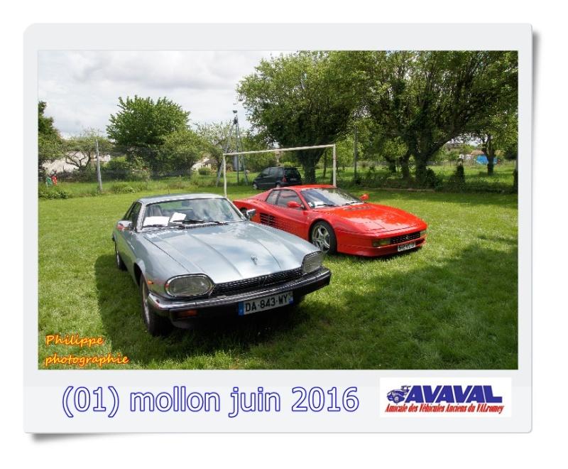 [01] 5 juin 2016 Mollon Dsc09515