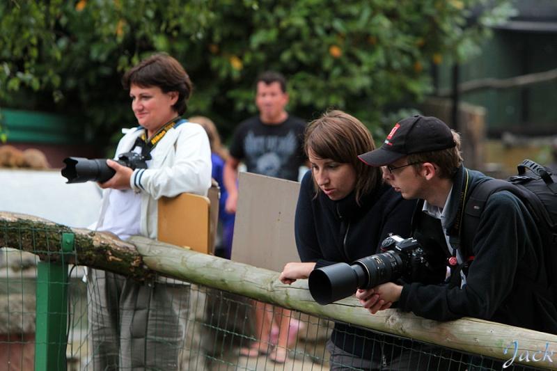 Sortie Animaux au Zoo d'Olmen le 16 août - Les photos d'ambiances 235610
