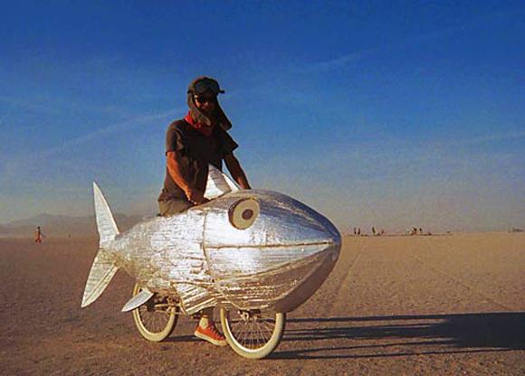 Véhicules et aérodynamique Fish_m10