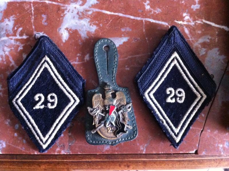 Récupé ce week end insigne du 29°dragon Img_2210