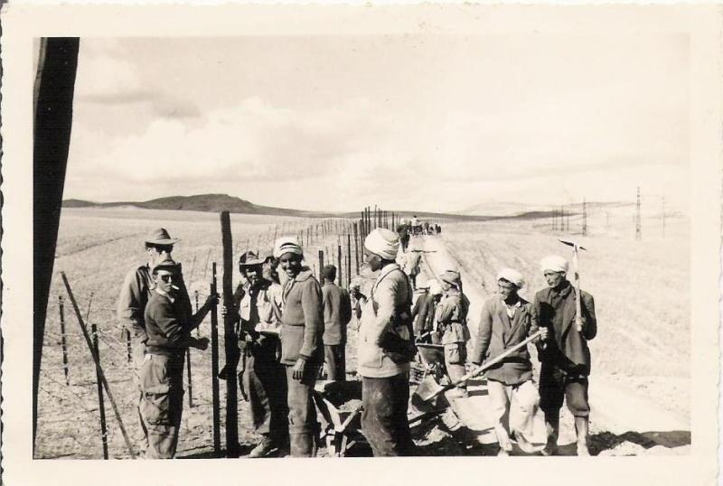 Photos de mon grand-père en Algérie Photo310