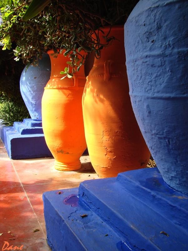 Marrakech les jardins de Majorelle M_majo10