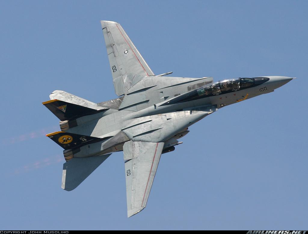 F-14 Tomcat - Page 2 10739910