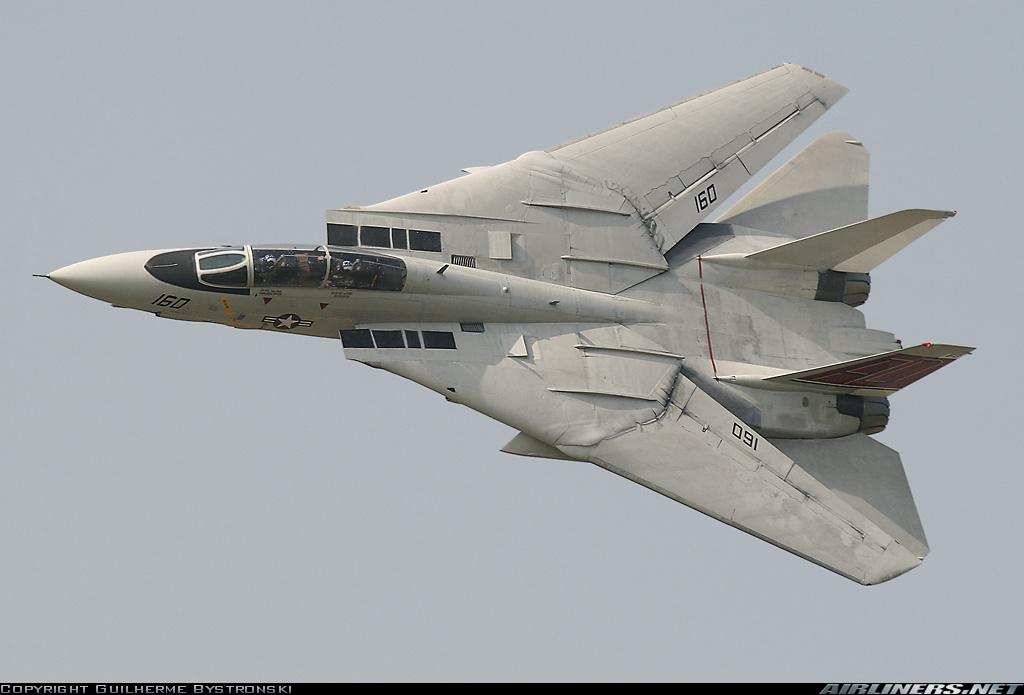 F-14 Tomcat - Page 2 10850210