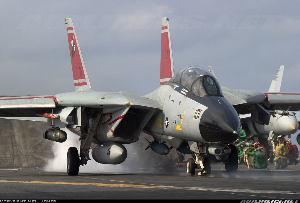 F-14 Tomcat - Page 2 10887110