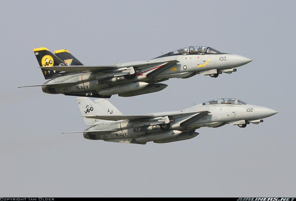 F-14 Tomcat - Page 2 15009310