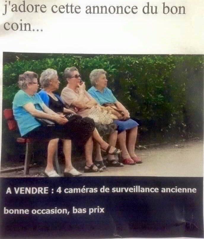 humour décalé  - Page 6 13102610