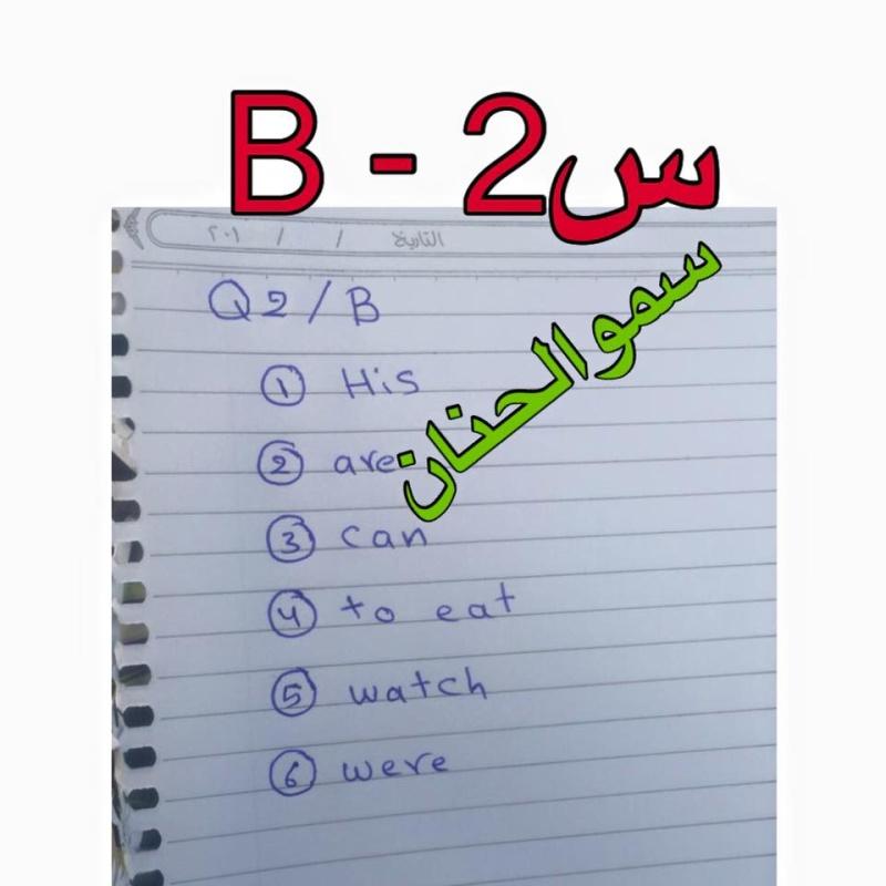 حل أسئلة امتحان اللغة الانكليزية للصف السادس الابتدائى 2016 فى العراق الدور الأول  238