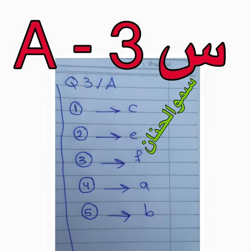 حل أسئلة امتحان اللغة الانكليزية للصف السادس الابتدائى 2016 فى العراق الدور الأول  338