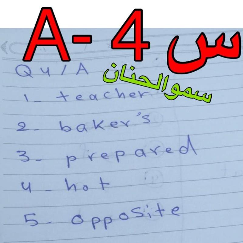 حل أسئلة امتحان اللغة الانكليزية للصف السادس الابتدائى 2016 فى العراق الدور الأول  824