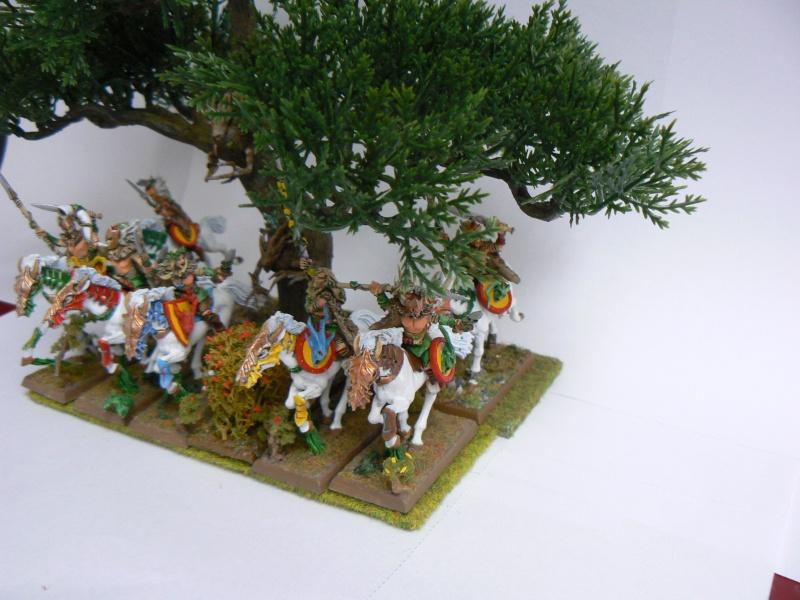 Mon Armée Elfes Sylvains - Page 2 B10
