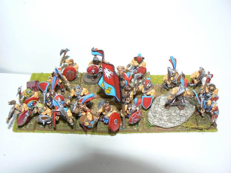 Mon armée du culte d'Ulric et du Middenland - Page 3 C3g_mi11