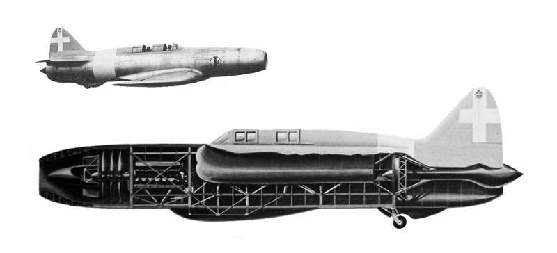 les avions prototypes Capron10