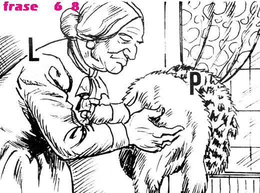 va dove ti porta il rebus - Pagina 12 Bbbbb10