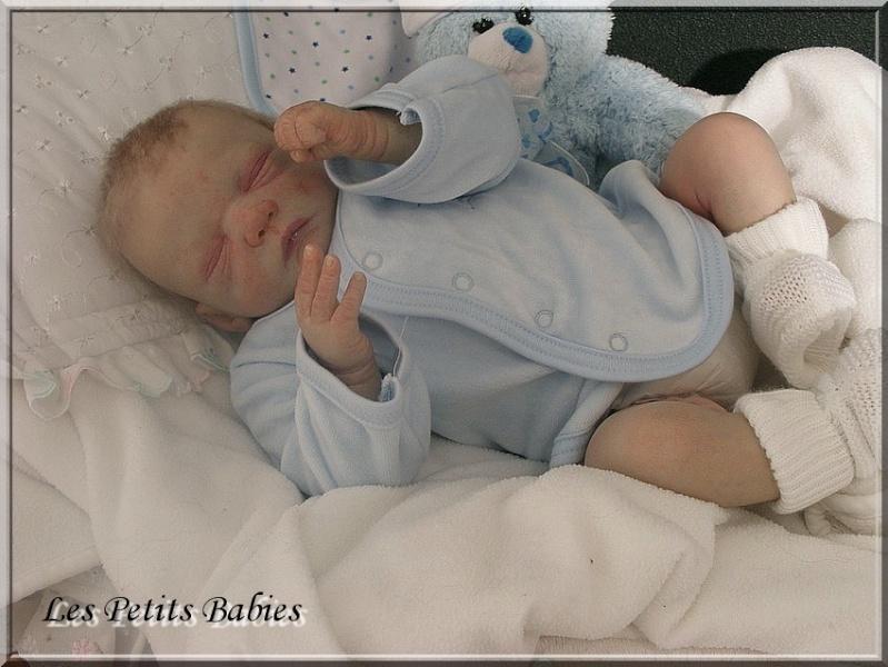 Galerie : Les Petits Babies Basile10
