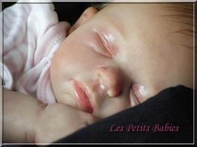 Galerie : Les Petits Babies Louise10