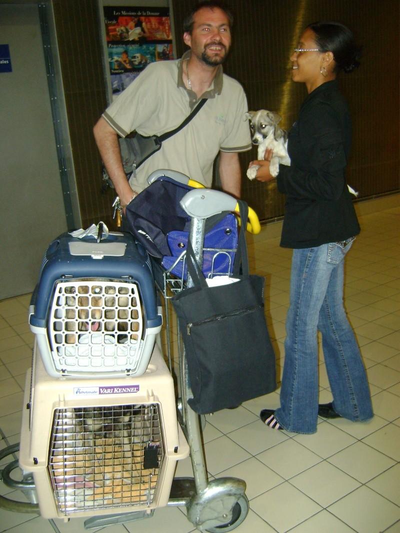 REmerciements aux bénévoles faisant les voyages en Roumanie Dsc00821