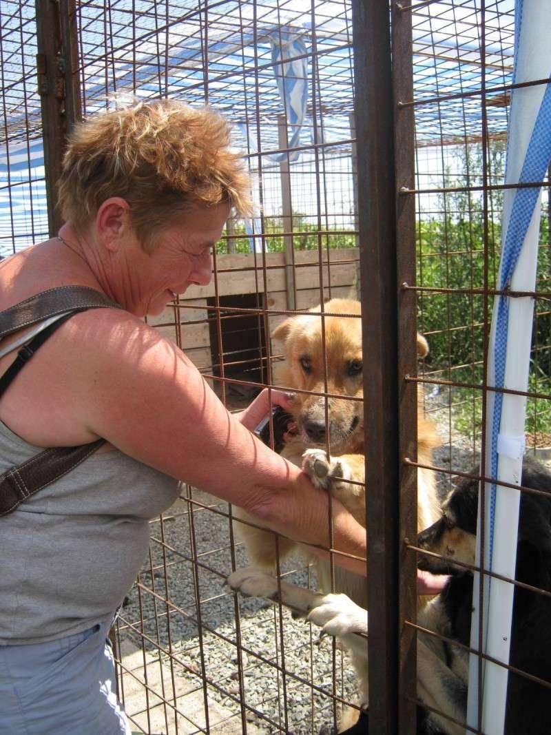 REmerciements aux bénévoles faisant les voyages en Roumanie Img_0279