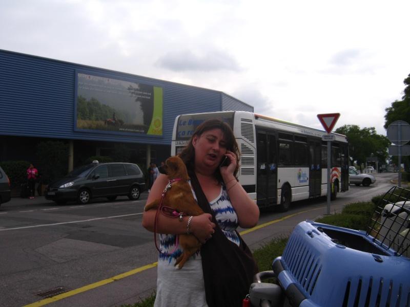 REmerciements aux bénévoles faisant les voyages en Roumanie Img_0733