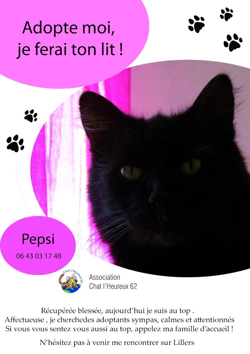 15) Pepsi, née en janvier 2015 Pepsi_10