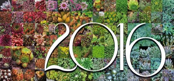 Rendez-vous aux jardins à Wangen le samedi 4 juin 2016 2016_p10