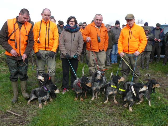 Brevet de chasse sur chevreuil à Bourbriac (22) Fomel_10