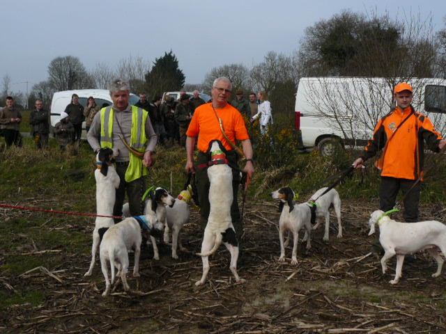Brevet de chasse sur chevreuil à Bourbriac (22) Mottai10