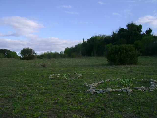 JdB de 4 hectares de pâtures dans le SUD : Janvier à la diète... + expérimentation 108avr10
