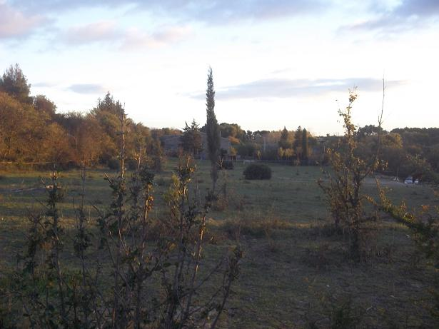 JdB de 4 hectares de pâtures dans le SUD : Janvier à la diète... + expérimentation 169nov10