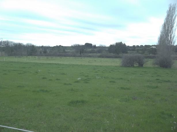 JdB de 4 hectares de pâtures dans le SUD : Janvier à la diète... + expérimentation 219pat10